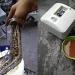 bảo dưỡng bình nóng lạnh tại hải phòng