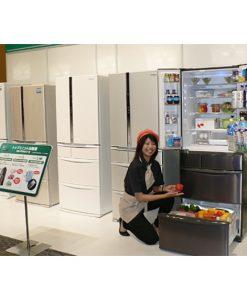 Tủ lạnh hàng bãi Panasonic 300L-600L loại 5-6 cánh, có inverter, làm đá tự động, khử mùi và diệt khuẩn